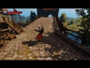 Geralt of Rivia's Pro Witcher 3.