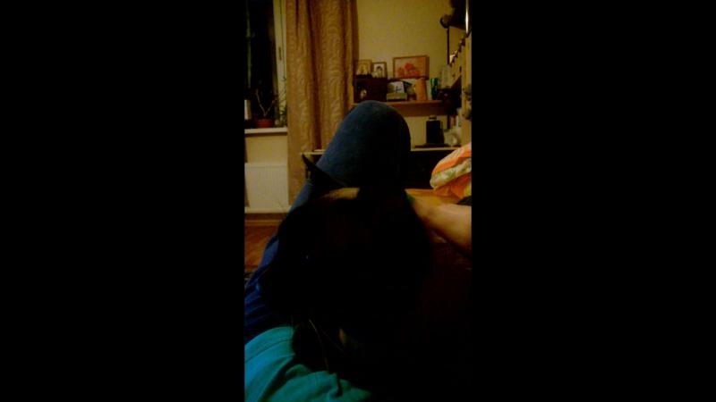 Мой любимый котик Бенька