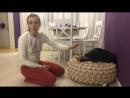 Как правильно выбрать щенка девочку - лабрадор-ретривер