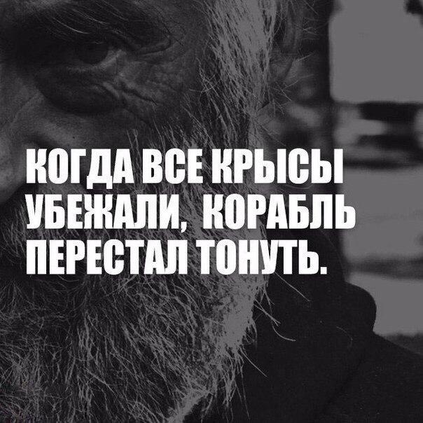 Фото №456239130 со страницы Данияра Мирзакаримова