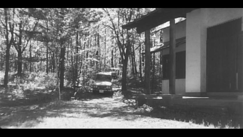 Yawa hada mushuku: Otoko goroshi onna goroshi / Kôji Wakamatsu / Naked Bullet / 1969