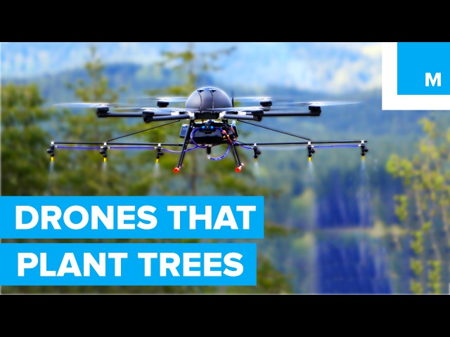 How Drones are Helping to Plant Trees A Cleaner Future