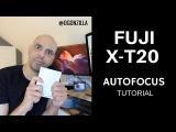Fuji X-T20 Autofocus Modes Explained