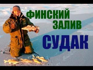 Зимняя рыбалка на финском заливе. Ловим судака
