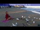 Красивая девушка на море в Испании, кормит голубей и пьет вино, в Аликанте на пляже