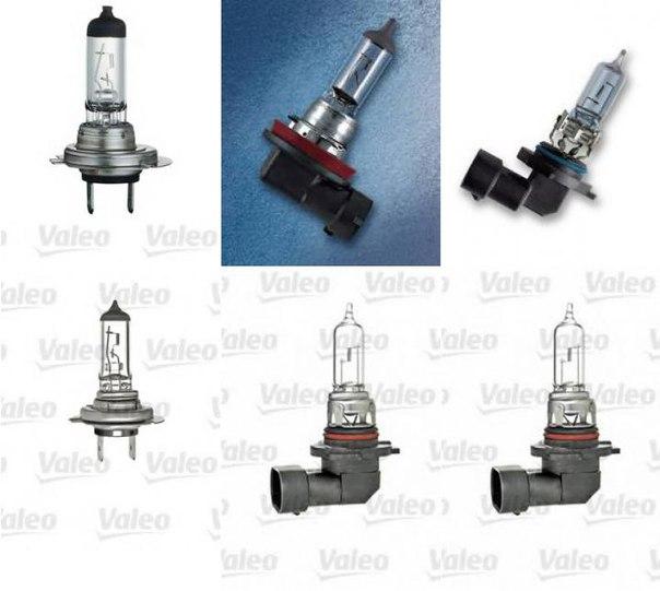 Лампа накаливания, фара дальнего света; Лампа накаливания, противотуманная фара для BMW Z3 купе (E36)