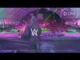 Alan Walker - Nameless Music Festival 2017