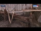 Археологические раскопки на Соборном холме в Вязьме