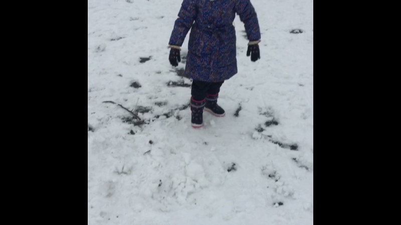 Первый снег ☃️🌨⛄️🌬🌲🎅🏽❄️
