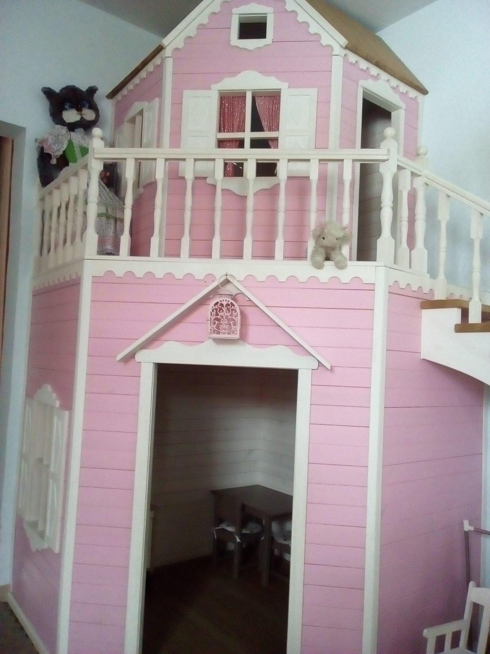 Кошкин дом (27.02.2017)