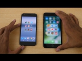 Google Pixel vs iPhone 7 Plus - Speed Test