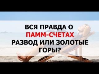 Вся Правда о Памм Счетах на Форекс.Форекс. Памм Счета Развод или нет.