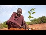 Как Африканец превратил пустыню в райский сад