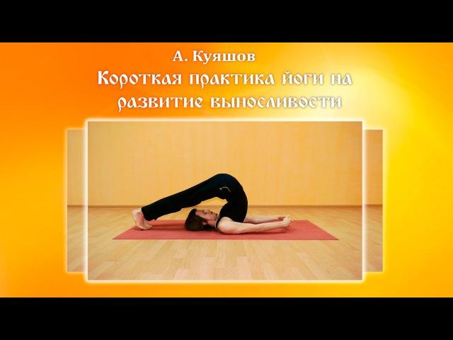 Короткая практика йоги на развитие выносливости Алексей Куяшов.
