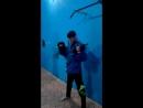 Mannequin Challenge/Манекен Челендж - флешмоб Самбисты Джазатор