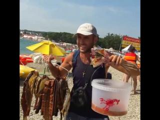 Пиво, рыба, раки! Дивноморское 2016