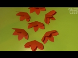 Открытка с 3D ЦВЕТАМИ внутри _ Своими руками на 8 МАРТА