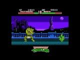TMNT Tournament Fighters Beyond NES, февраль 2017. ectoPower vs Kalmah
