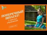 Поперечный шпагат! 5 простых упражнений   растяжка для начинающих! S   HUB