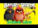 The best song for kids Angry Birds HEAD SHOULDERS KNEES and TOES
