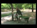 Серебристое дерево с поющим котом. Владислав Крапивин.