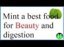 Mint benefits Benefits of mint Health benefits of mint Mint chatney Mint chatni