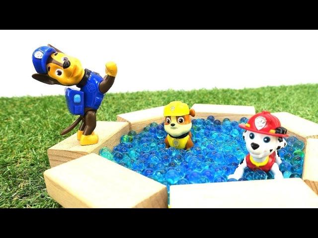 PawPatrol i nuovi episodi-Giochi educativi per bambini in italiano-Cuccioli all´azione piscina