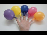 Color Wet Balloons Compilation - 5 Baby Finger Family Song Learn Colours - Balloons Finger Family