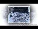 Кованые мангалы и жаровни – художественная ковка в Москве – 499 403-13-89