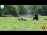 Прикол 2015 - Жестокая охота на дикого кабана. Нервным не смотреть