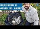 Рыбалка с бородачами фидер на канале им Москвы осенью