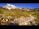 Mount Rainier National Park. Episode 2 - 4K Nature Documentary Film