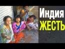 Индия Реки мусора Бомжи Животные на улицах