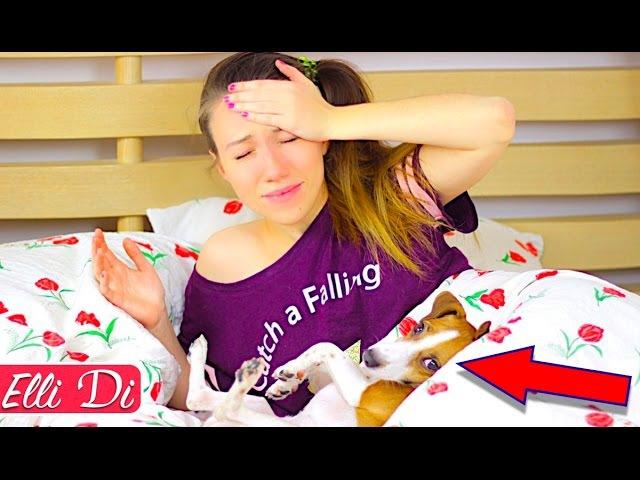 МОЁ УТРО - ПРОСПАЛА | МОЁ УТРО С СОБАКОЙ / MY MORNING ROUTINE with dog | Elli Di Pets