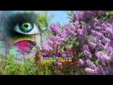 vlc-record-2017-06-27-19h49m00s-Песни, которые тронут душу...Шансон и Красивое Видео (New 2017).mp4-.mp4