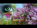 Vlc-record-2017-06-27-19h49m00s-Песни, которые тронут душу...Шансон и Красивое Видео New 2017.mp4-.mp4