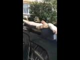 Кошак разлегся на машине
