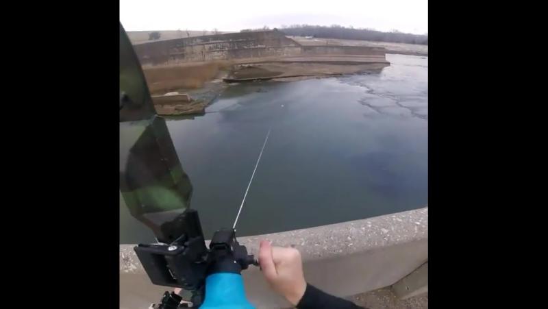 Рыбалка с луком. Выстрел с 60 метров.