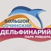 Дельфинарий Ривьера Сочи