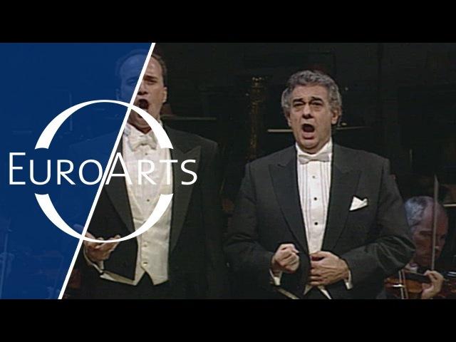 Placido Domingo Dwayne Croft: Verdi - È lui!...desso...Dio, che nell'alma infondere from Don Carlo