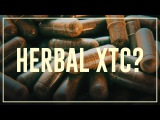 Herbal XTC - Dos and donts  Drugslab