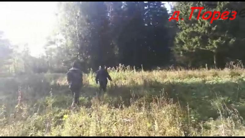 д.Порез Кировской обл.,Малмыжского района