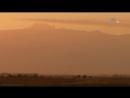 «В дебрях Африки – Гора Кения: Ледяное сердце Африки» (Документальный, животные, 2011)