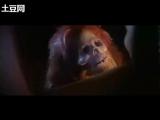 Sack Kidnapping Scene in Chinese Drama 人皮燈籠
