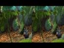 BIG BUCK BUNNY 3D SBS VR MOVIE - Google Carbdoard VR Box VIDEO 3D - VR VIDEO 3D SBS
