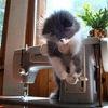 Ремонт швейных машин минск