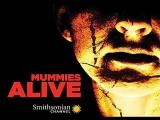 Ожившие мумии 1 серия. Погребенные в болоте / Mummies Alive (2015)