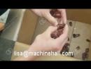 Date Pitting Machine|Dates Kernel Remove Machine