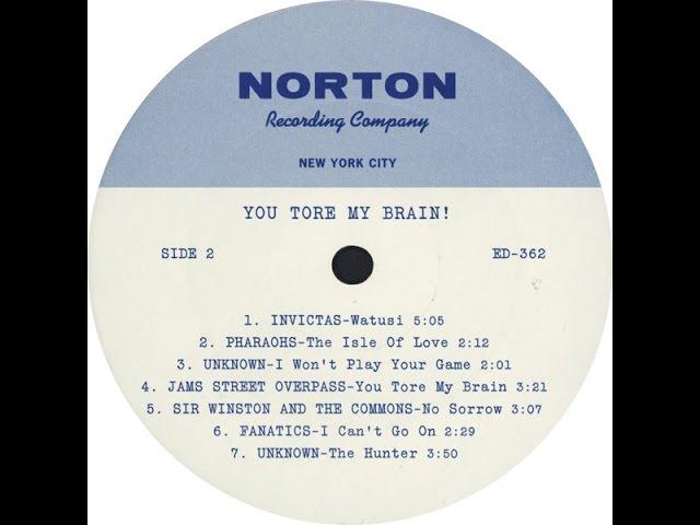 Unissued Sixties Garage Acetates 5 [You Tore My Brain!]