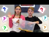 What's In The Box!? (MattyBRaps vs Gracie Haschak)